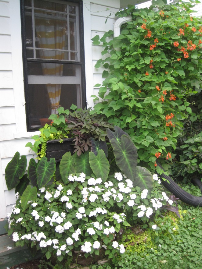 Top 10 Garden Stores In Madison Wisconsin Mel S Green