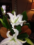 Flower Share offered year round in 2013, loved combining Magnolia and Casa Blanca Lilies!